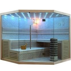 Sauna E1101 kaufen